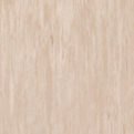 Линолеум Tarkett Standard Plus - Light beige 0479 (рулон)