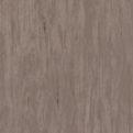 Линолеум Tarkett Standard Plus - Dark beige 0482 (рулон)
