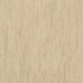 Линолеум Tarkett Standard Plus - Light yellow beige 0483 (рулон)
