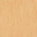 Линолеум Tarkett Standard Plus - Yellow 0485 (рулон)