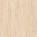 Линолеум Tarkett Standard Plus - Sand 0913 (рулон)