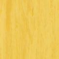 Линолеум Tarkett Standard Plus - Gold 0916 (рулон)