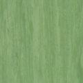 Линолеум Tarkett Standard Plus - Dark green 0921 (рулон)